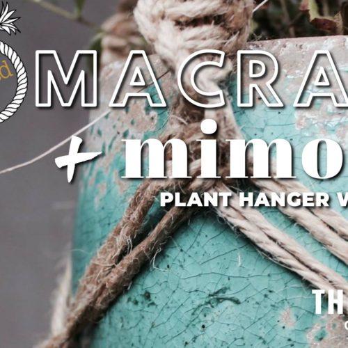 Frayed Macrame and Mimosas (Plant Hanger Workshop)